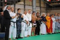 Участников Главной Арены было всего 8, они тщательно отбирались организаторами чемпионата WTKA из множества различных направлений боевых искусств по всему миру. Среди Гранд Мастеров совета были такие уважаемые и легендарные личности как Хироо Мачизуки (Hi
